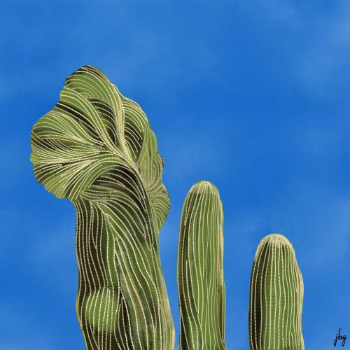 Watercolor Crested Saguaro Cactus against a brilliant blue sky, by Jill B Gilbert