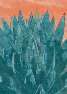 Digital watercolor drawing of a tall blue agave plant against a clay-colored background