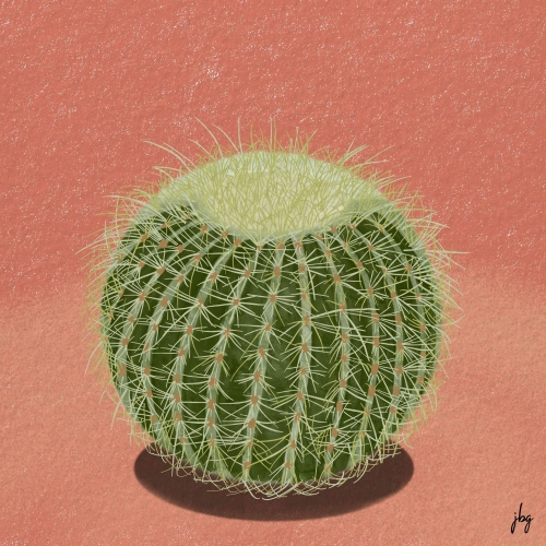 Digital watercolor drawing of a golden barrel cactus on a clay-colored background