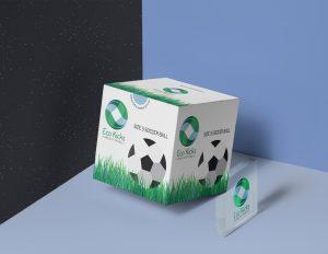 Eco Kicks Soccer Ball Box