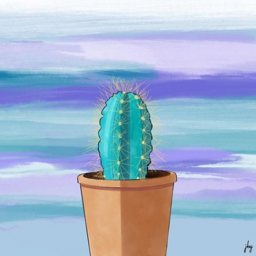 Torch cactus in a terracotta pot against a sky of blue and lavender